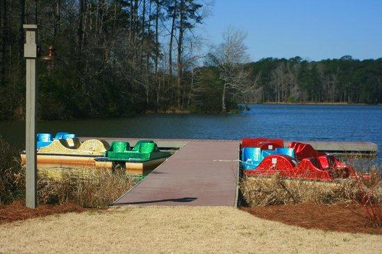 Bike rental picture of callaway gardens pine mountain for Callaway gardens fishing