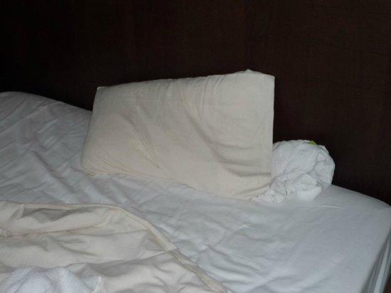 Hotel Mercure Angers Lac de Maine:                                     oreiller style usés et en mousse