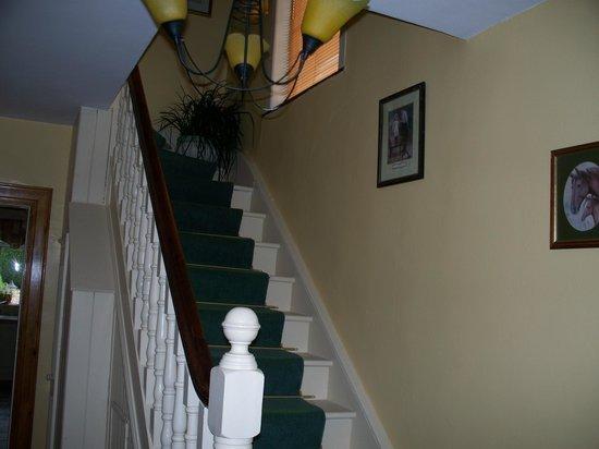 Drogheda Townhouse B&B: stairway
