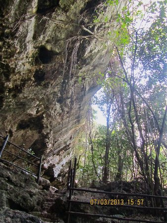 Mayan Riviera Tours- Day Tours:                   Entry to cenote