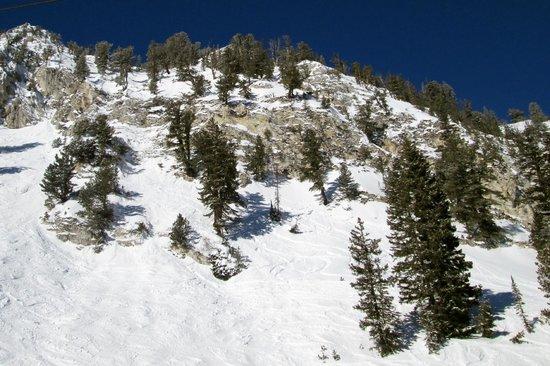 Solitude Mountain Resort:                   Heading up Summit lift