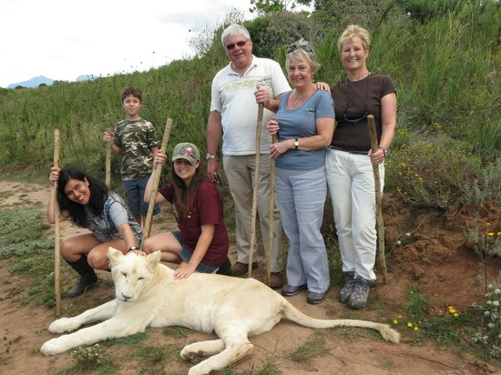 Knysna Tonquani Lodge & Spa: Walking with Lions Zorgfontein