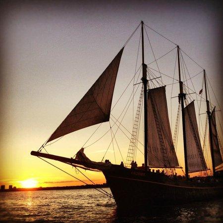 Tallship Cruises : Summer 2012