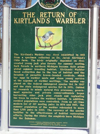 The Return of Kirtland's Warbler Historical Marker
