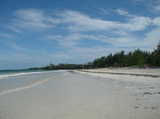 Hakuna Majiwe Beach Lodge: La spiaggia
