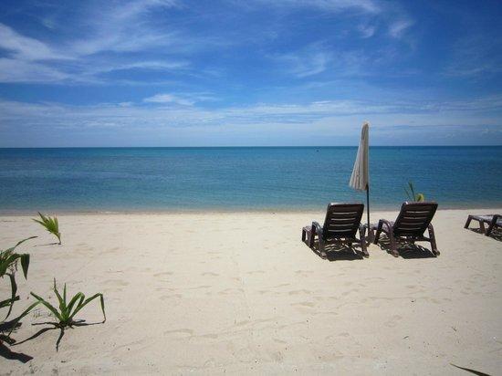 แซนด์ซี รีสอร์ท แอนด์ สปา:                   Sand sea
