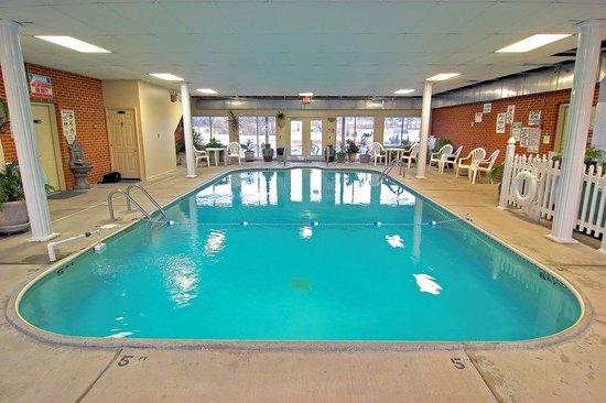 Travelodge Metropolis: Pool