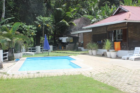 Kokogrove Chalets :                                     swimming pool