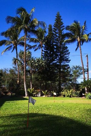 Kihei Bay Vista: Manicured grounds
