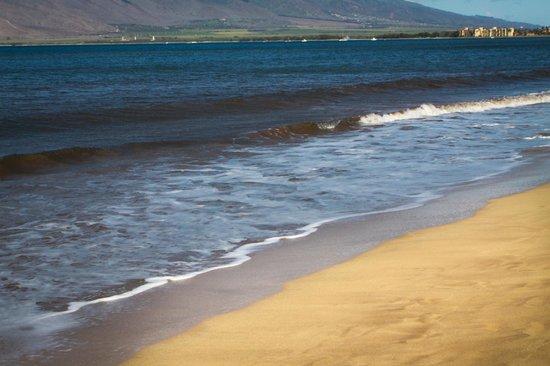 Kihei Bay Vista: Kalepolepo Beach across the street