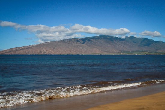 Kihei Bay Vista: Kalepolepo Beach just across the street