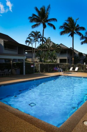Kihei Bay Vista: Beautiful Pool Area