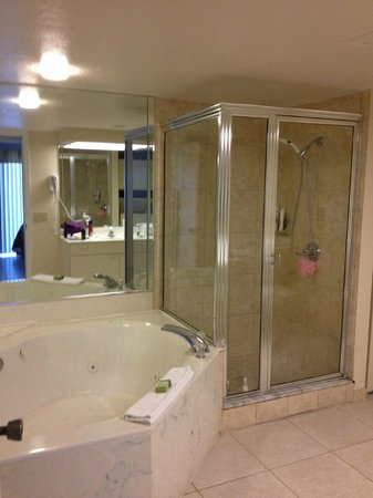 Silver Lake Resort : master bathroom