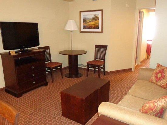 Euro-Suites Hotel: Living Room