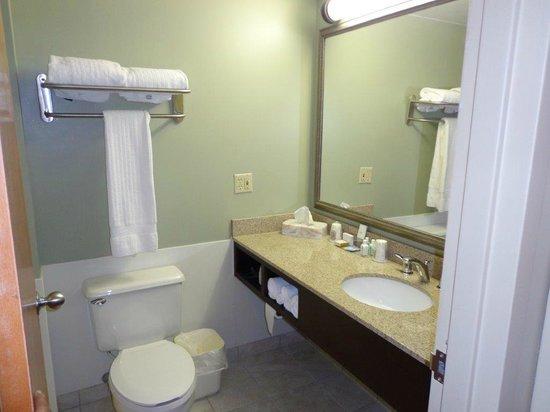 Euro-Suites Hotel: Bathroom