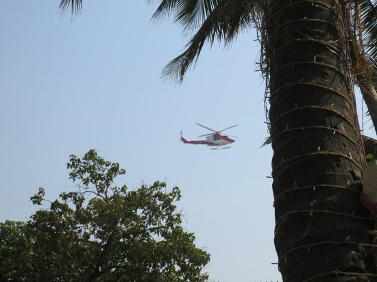 Ramada Plaza Palm Grove: About every 5mins there was a heli landing/taking off