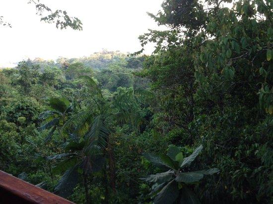Hotel Cascata Del Bosco: View from a Cabin