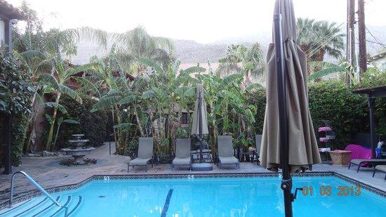 Hotel California: Jardin