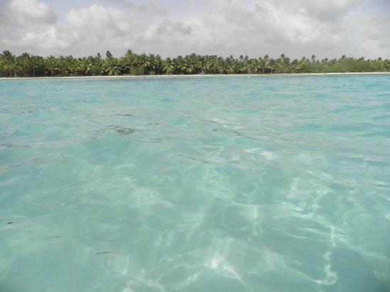 Piscine naturali foto di isla saona parque nacional del este tripadvisor - Isola di saona piscine naturali ...