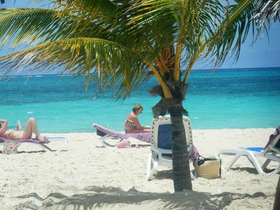Paradisus Rio de Oro Resort & Spa:                   This is the Beach