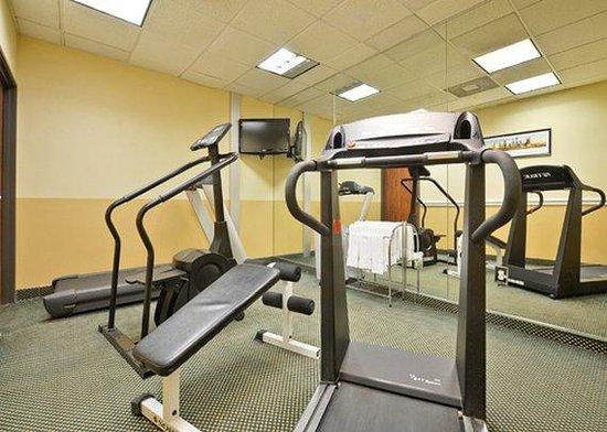 Comfort Suites Willowbrook / Technology Corridor : fitness center