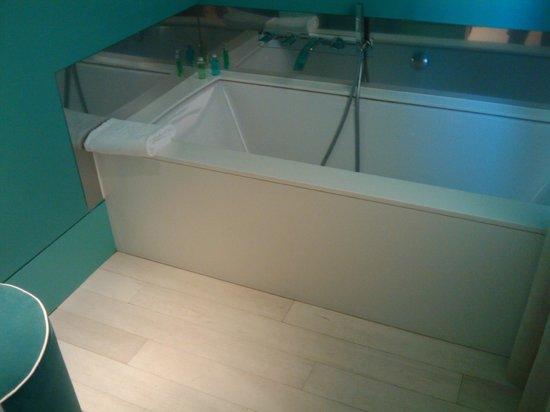 SINA Centurion Palace:                   Seperate bath