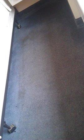 Econo Lodge:                                                       Carpet in room