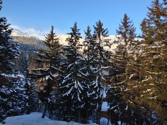 Hotel Le Mont-Paisible: Aussicht Zimmer Ostseite