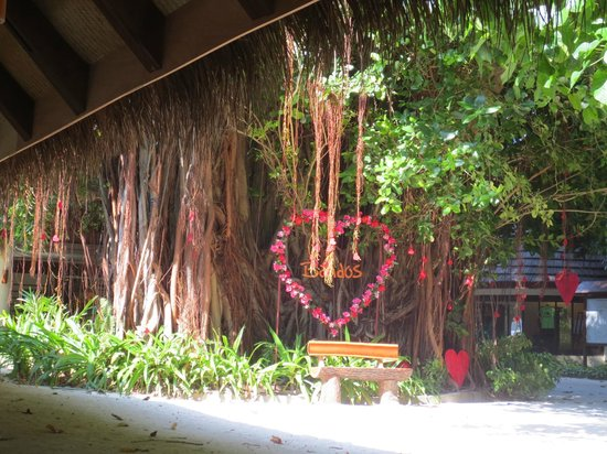 Bandos Maldives: Prepared for Valentines