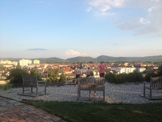 Hotel Zum Goldenen Engel:                   garden view