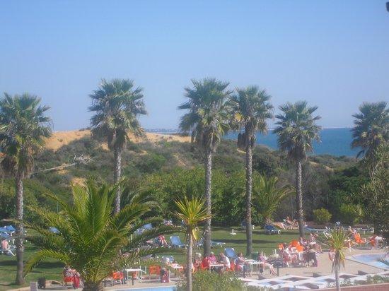 Auramar Beach Resort: By the pool