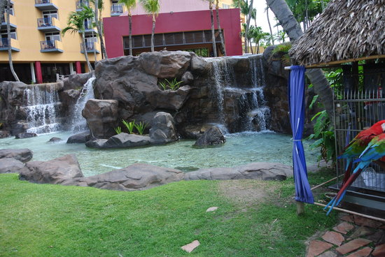 Hilton Aruba Caribbean Resort & Casino:                                     Waterfalls