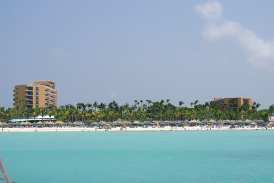 Hilton Aruba Caribbean Resort & Casino:                                     Whole Resort from Ocean