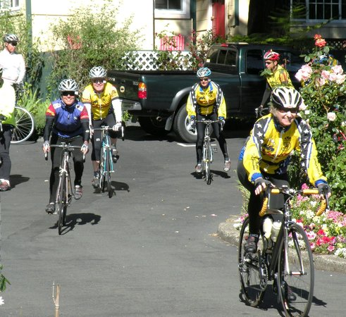 Fern Grove Cottages: Great spot for Bike Riders