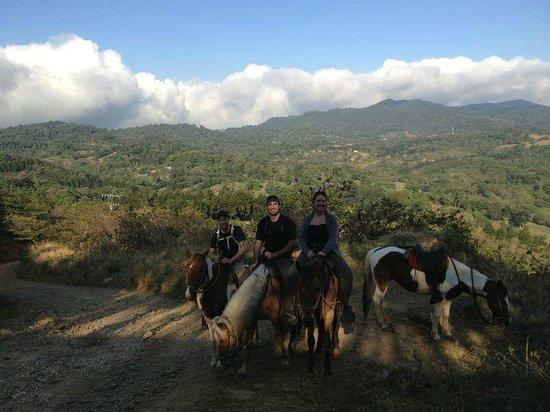 Sabine's Smiling Horses: monteverde in the background