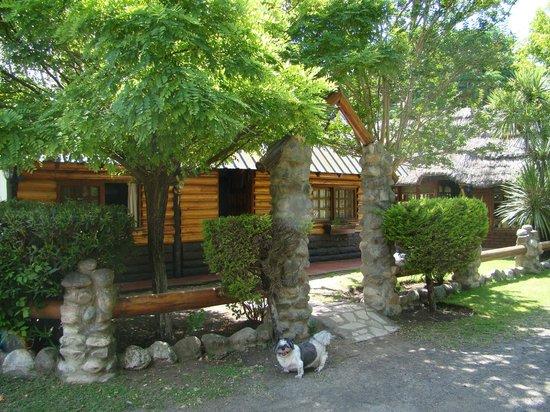 Los Platanos, Cabanas y Suites: cabaña super hermosa