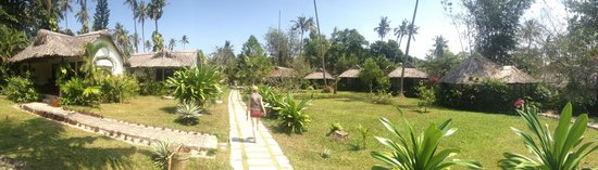 Mai House Resort:                   The bungalows are set in immaculate grounds.