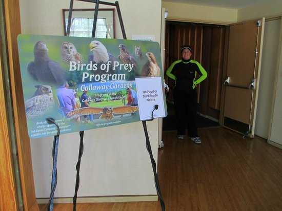 The Lodge and Spa at Callaway Resort & Gardens: Birds of Prey Show