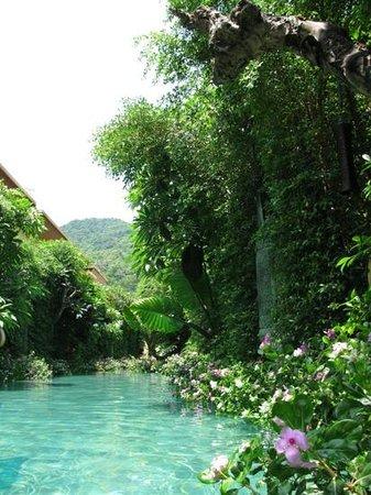 The Baray Villa: private pool in Baray Villa