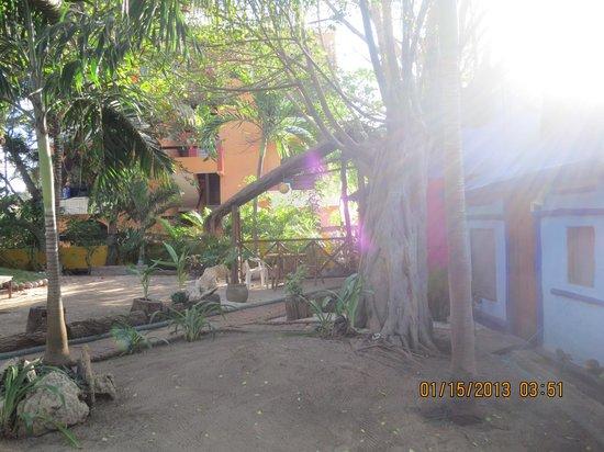 Amar Inn B&B: grounds