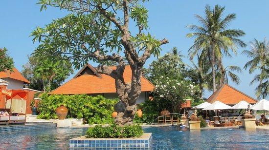 Renaissance Koh Samui Resort & Spa:                   Renaissance pool, Koh Samui