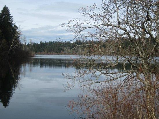 Elk/Beaver Lake Regional Park:                   Lake