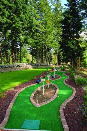 Bonneville Hot Springs Resort & Spa: Enjoy Miniature Golf!