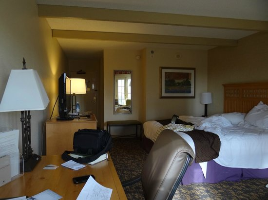 DoubleTree by Hilton Hotel San Antonio Airport:                   King Room