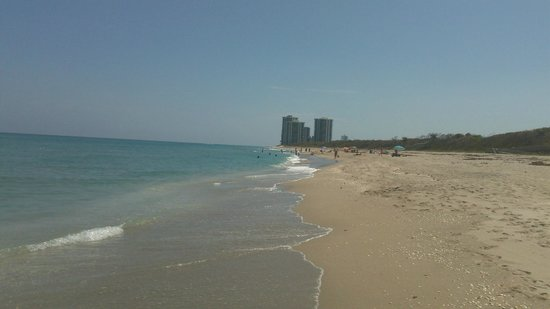 John D. MacArthur Beach State Park:                   Looking South towards Singer Island