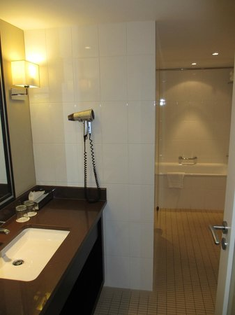 Renaissance Amsterdam Hotel:                   Superior Room, Club lounge access, Larger Guest room, 2 Double