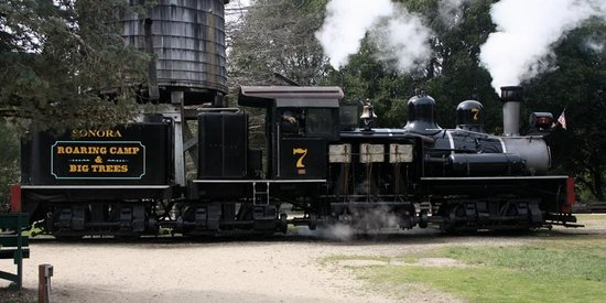 Roaring Camp & Big Trees Narrow-Gauge Railroad:                   train