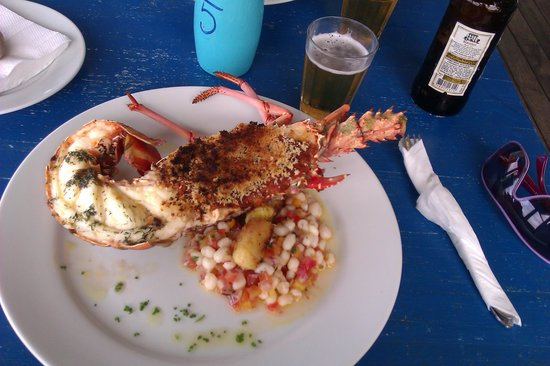 Rocka Beach Lounge & Restaurant:                   lobster