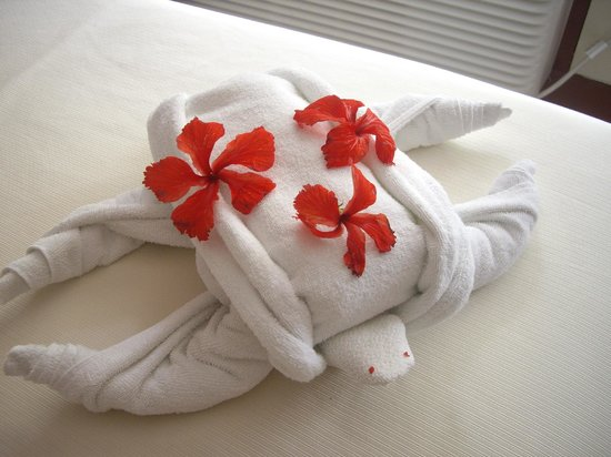 BEST WESTERN Jaco Beach All Inclusive Resort:                   Daily towel/flower arraingments