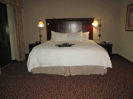 Hampton Inn & Suites Norfolk-Airport: King bed